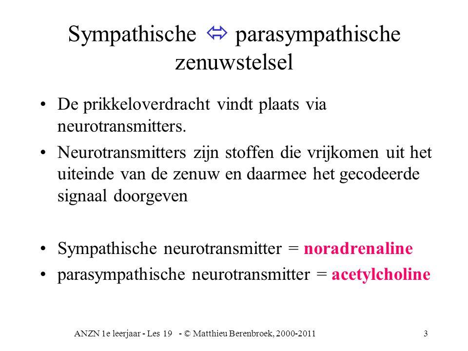 ANZN 1e leerjaar - Les 19 - © Matthieu Berenbroek, 2000-201114 Verlammingen Registratie van gevoel, tast in de sensibele (aanvoerende) hersenschors, grenst aan de (afvoerende) motorische hersenschors altijd links met rechts vergelijken hemiplegie = spastische verlamming t.g.v.