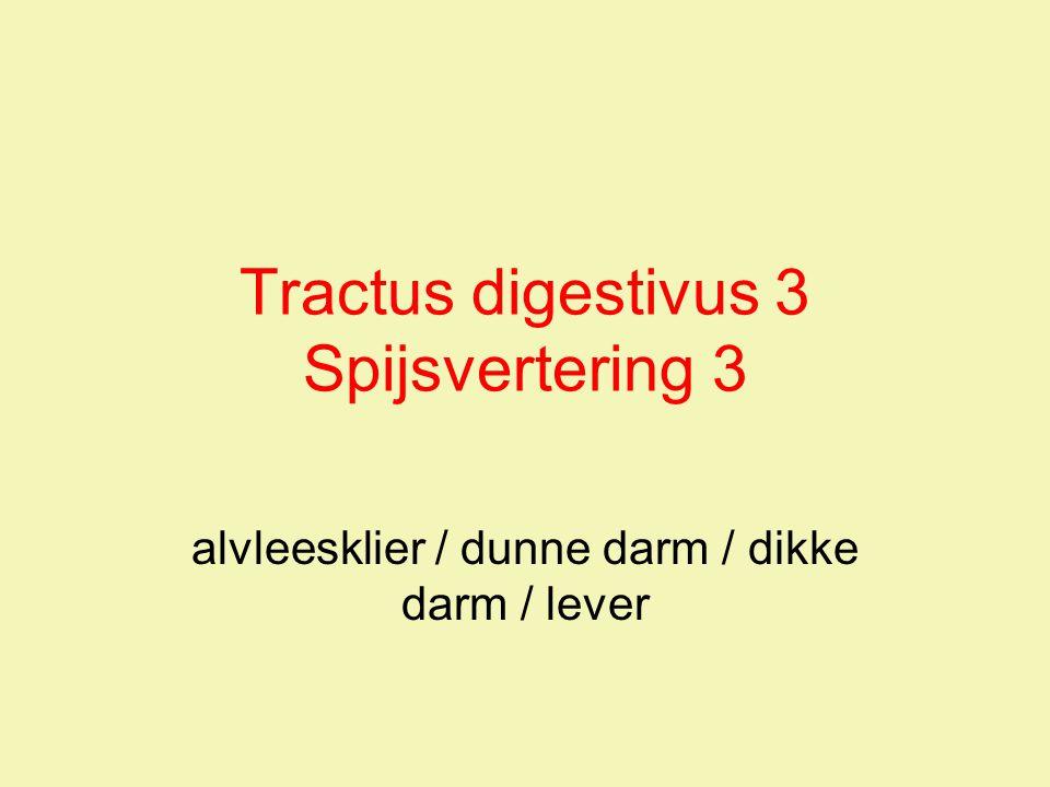 FHV2009 / Cxx54 11+12 / Anatomie & Fysiologie -Tractus digestivus 3 12 Lever vervolg 3 venae hepatica (leveraders) lopen aan de bovenzijde uit de lever naar vena cava inferior (onderste holle ader) bestaat uit synchroon lopende vaatjes: –leverslagader –poortader –galgang eerste twee vermengen zich daardoor voeding en resorptie ineen