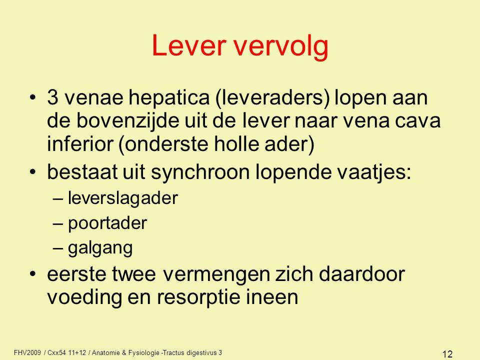 FHV2009 / Cxx54 11+12 / Anatomie & Fysiologie -Tractus digestivus 3 12 Lever vervolg 3 venae hepatica (leveraders) lopen aan de bovenzijde uit de leve