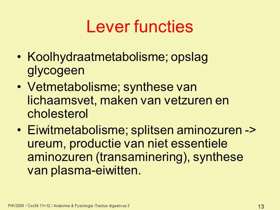 FHV2009 / Cxx54 11+12 / Anatomie & Fysiologie -Tractus digestivus 3 13 Lever functies Koolhydraatmetabolisme; opslag glycogeen Vetmetabolisme; synthes