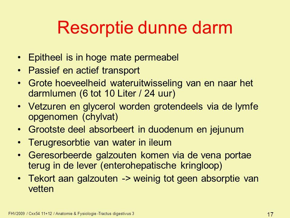 FHV2009 / Cxx54 11+12 / Anatomie & Fysiologie -Tractus digestivus 3 17 Resorptie dunne darm Epitheel is in hoge mate permeabel Passief en actief trans