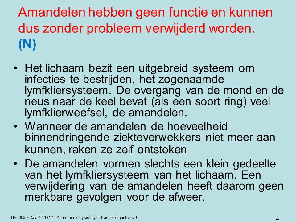 FHV2009 / Cxx54 11+12 / Anatomie & Fysiologie -Tractus digestivus 3 4 Amandelen hebben geen functie en kunnen dus zonder probleem verwijderd worden. (