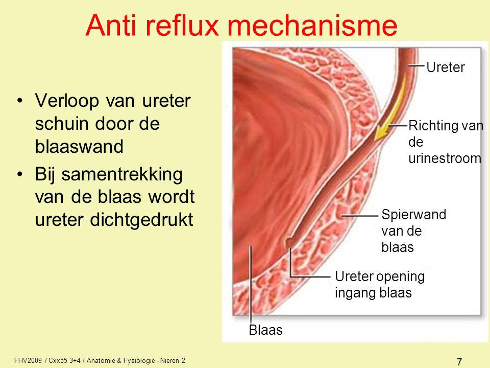 FHV2009 / Cxx55 3+4 / Anatomie & Fysiologie - Nieren 2 77 Anti reflux mechanisme Verloop van ureter schuin door de blaaswand Bij samentrekking van de