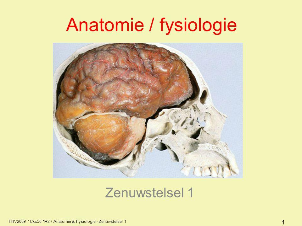 FHV2009 / Cxx56 1+2 / Anatomie & Fysiologie - Zenuwstelsel 1 1 Anatomie / fysiologie Zenuwstelsel 1