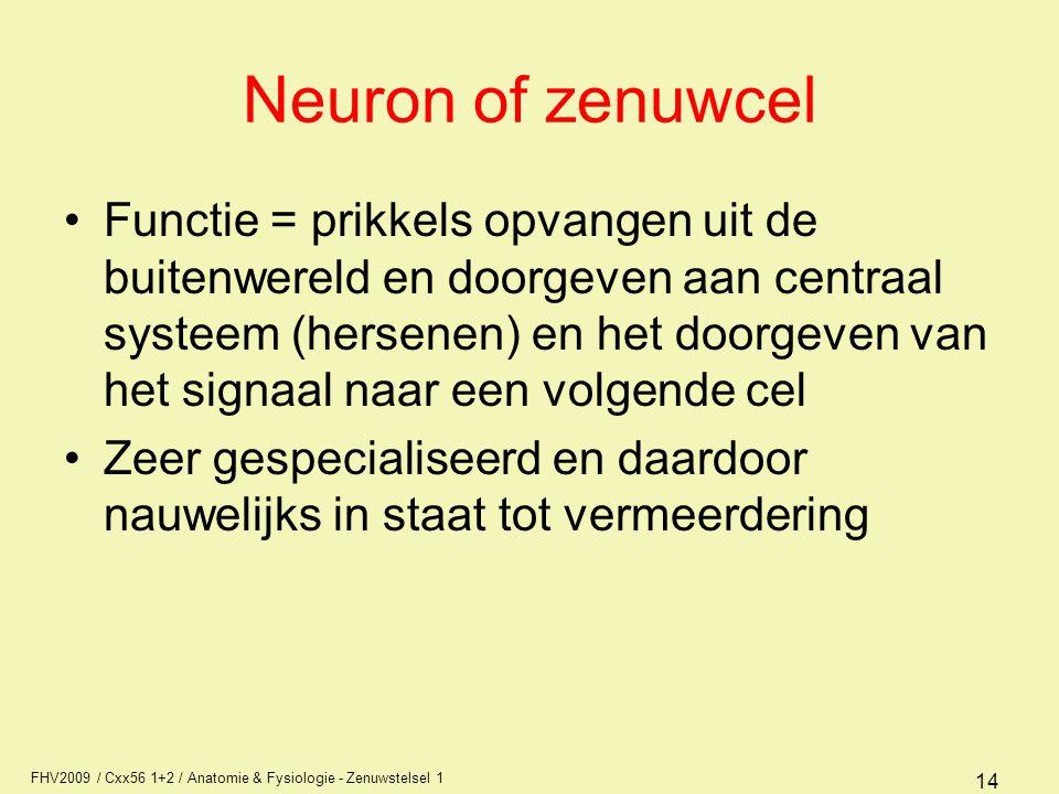 FHV2009 / Cxx56 1+2 / Anatomie & Fysiologie - Zenuwstelsel 1 14 Neuron of zenuwcel Functie = prikkels opvangen uit de buitenwereld en doorgeven aan centraal systeem (hersenen) en het doorgeven van het signaal naar een volgende cel Zeer gespecialiseerd en daardoor nauwelijks in staat tot vermeerdering