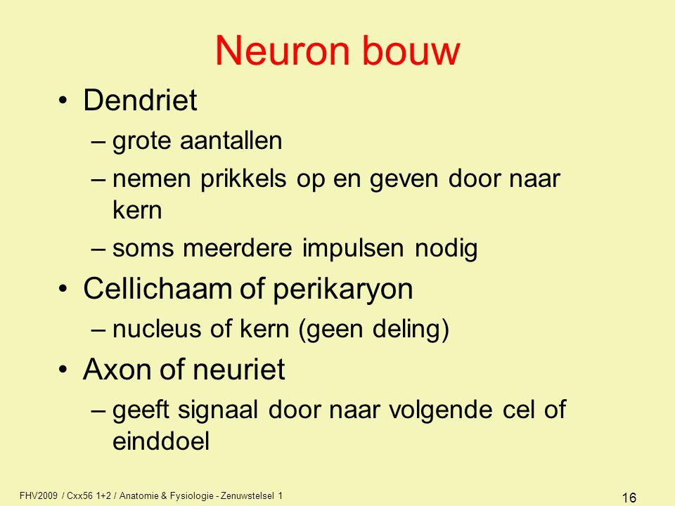 FHV2009 / Cxx56 1+2 / Anatomie & Fysiologie - Zenuwstelsel 1 16 Neuron bouw Dendriet –grote aantallen –nemen prikkels op en geven door naar kern –soms meerdere impulsen nodig Cellichaam of perikaryon –nucleus of kern (geen deling) Axon of neuriet –geeft signaal door naar volgende cel of einddoel