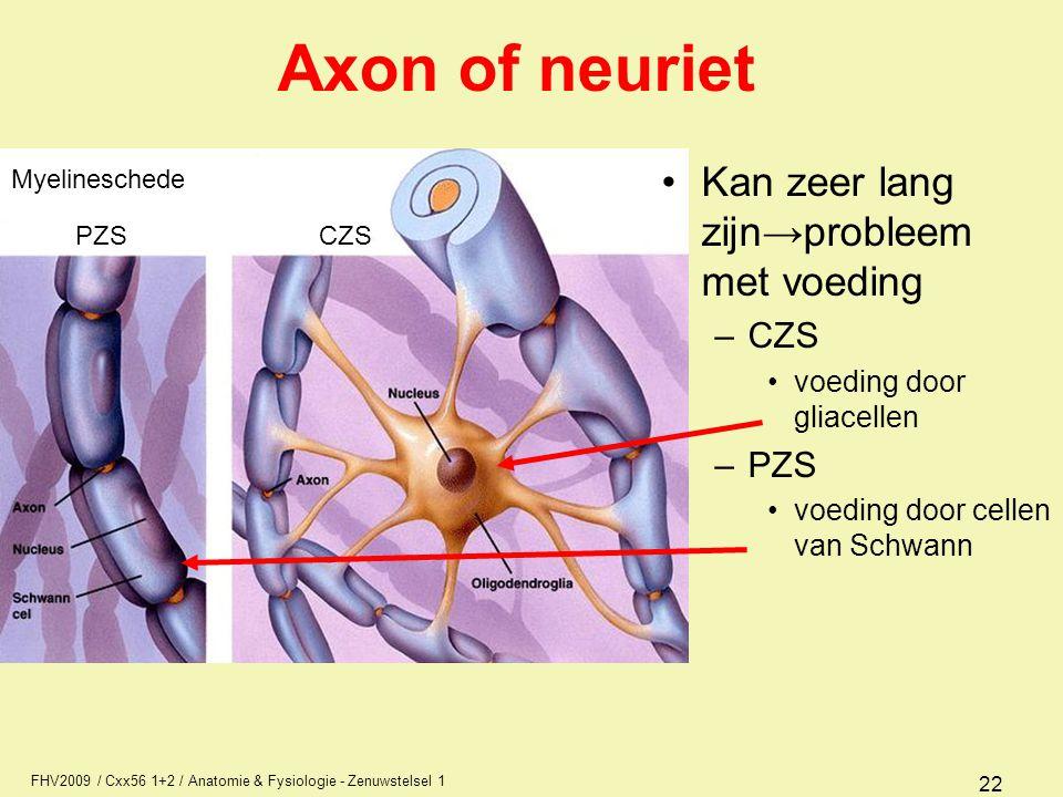 FHV2009 / Cxx56 1+2 / Anatomie & Fysiologie - Zenuwstelsel 1 22 Axon of neuriet Kan zeer lang zijn→probleem met voeding –CZS voeding door gliacellen –PZS voeding door cellen van Schwann Myelineschede PZS CZS