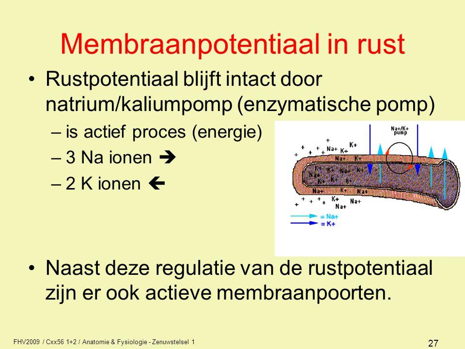 FHV2009 / Cxx56 1+2 / Anatomie & Fysiologie - Zenuwstelsel 1 27 Membraanpotentiaal in rust Rustpotentiaal blijft intact door natrium/kaliumpomp (enzymatische pomp) –is actief proces (energie) –3 Na ionen  –2 K ionen  Naast deze regulatie van de rustpotentiaal zijn er ook actieve membraanpoorten.