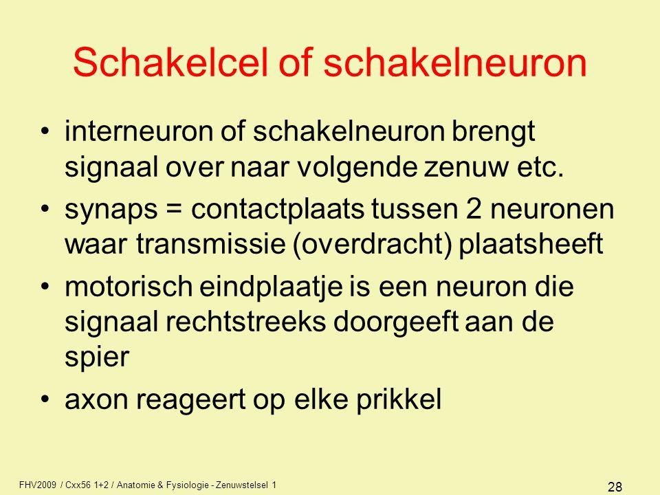 FHV2009 / Cxx56 1+2 / Anatomie & Fysiologie - Zenuwstelsel 1 28 Schakelcel of schakelneuron interneuron of schakelneuron brengt signaal over naar volgende zenuw etc.