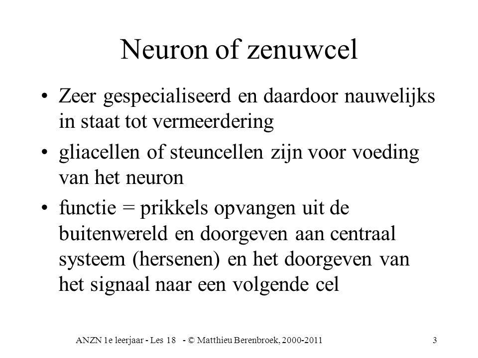 ANZN 1e leerjaar - Les 18 - © Matthieu Berenbroek, 2000-20113 Neuron of zenuwcel Zeer gespecialiseerd en daardoor nauwelijks in staat tot vermeerdering gliacellen of steuncellen zijn voor voeding van het neuron functie = prikkels opvangen uit de buitenwereld en doorgeven aan centraal systeem (hersenen) en het doorgeven van het signaal naar een volgende cel