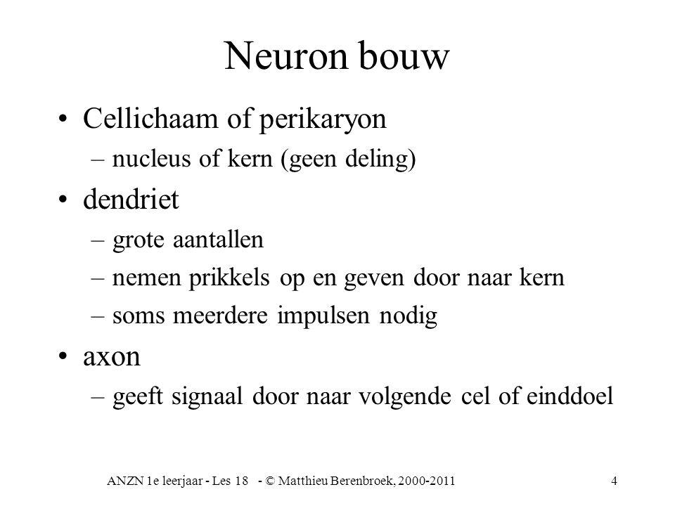 ANZN 1e leerjaar - Les 18 - © Matthieu Berenbroek, 2000-20114 Neuron bouw Cellichaam of perikaryon –nucleus of kern (geen deling) dendriet –grote aantallen –nemen prikkels op en geven door naar kern –soms meerdere impulsen nodig axon –geeft signaal door naar volgende cel of einddoel