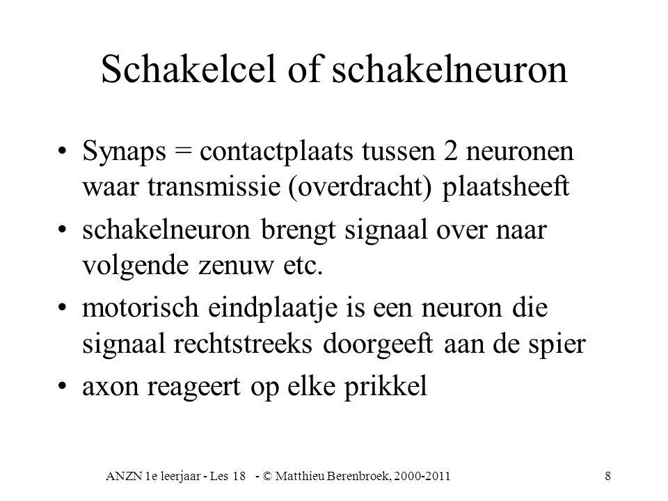 ANZN 1e leerjaar - Les 18 - © Matthieu Berenbroek, 2000-20118 Schakelcel of schakelneuron Synaps = contactplaats tussen 2 neuronen waar transmissie (overdracht) plaatsheeft schakelneuron brengt signaal over naar volgende zenuw etc.
