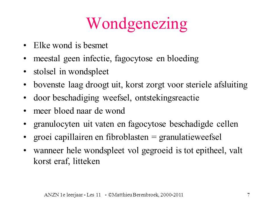 ANZN 1e leerjaar - Les 11 - ©Matthieu Berenbroek, 2000-20117 Wondgenezing Elke wond is besmet meestal geen infectie, fagocytose en bloeding stolsel in