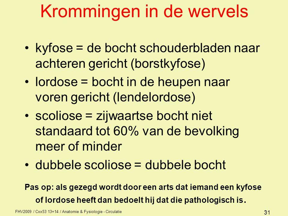 FHV2009 / Cxx53 13+14 / Anatomie & Fysiologie - Circulatie 31 Krommingen in de wervels kyfose = de bocht schouderbladen naar achteren gericht (borstky