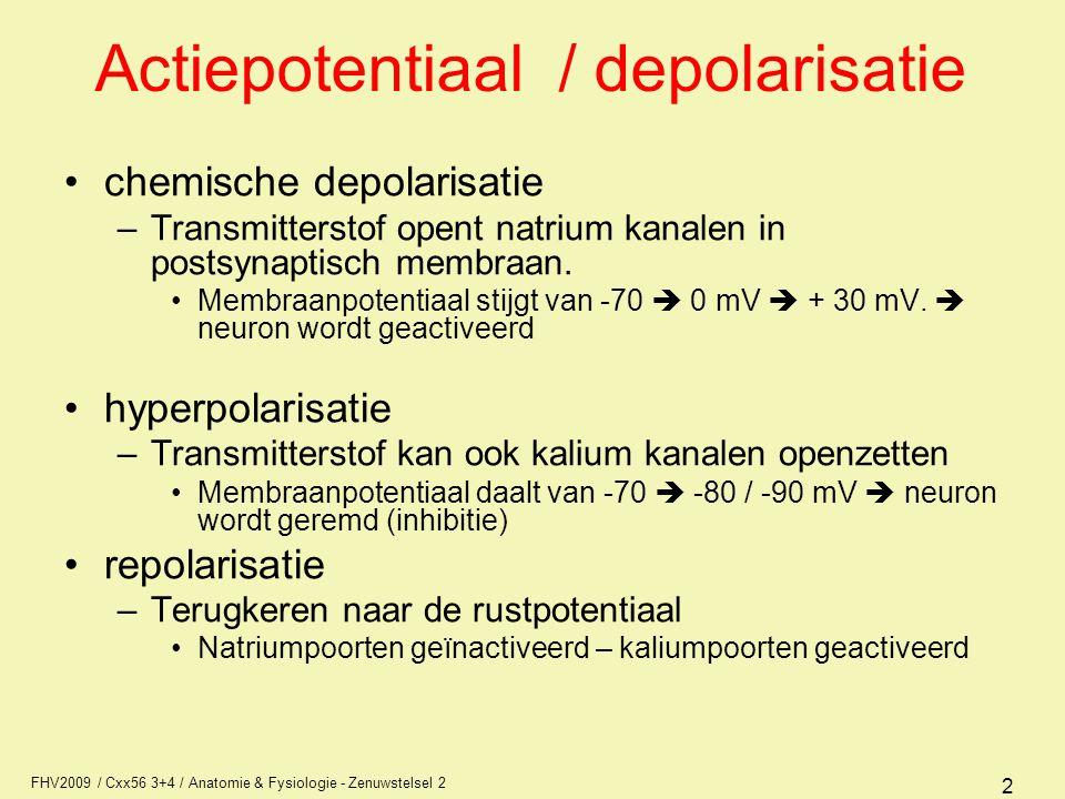 FHV2009 / Cxx56 3+4 / Anatomie & Fysiologie - Zenuwstelsel 2 2 Actiepotentiaal / depolarisatie chemische depolarisatie –Transmitterstof opent natrium