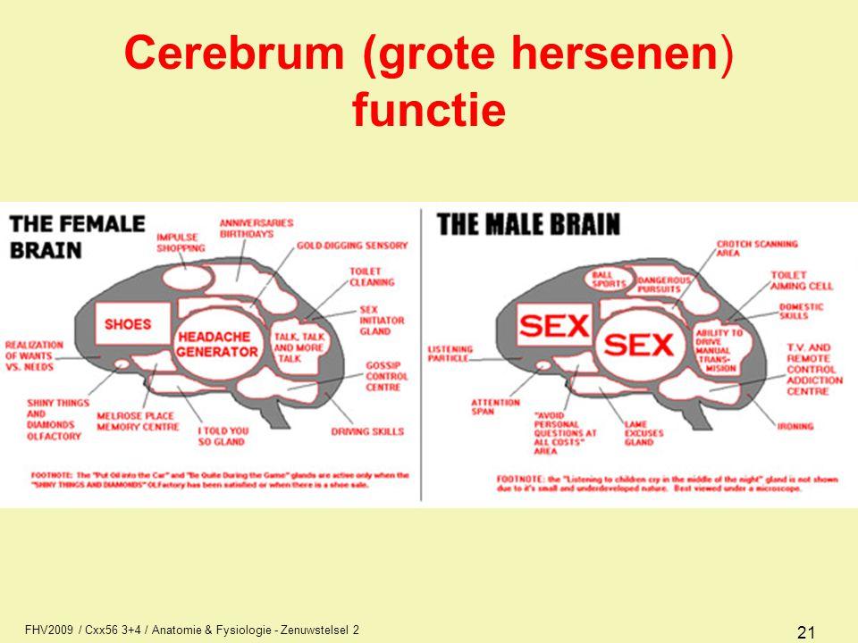 FHV2009 / Cxx56 3+4 / Anatomie & Fysiologie - Zenuwstelsel 2 21 Cerebrum (grote hersenen) functie