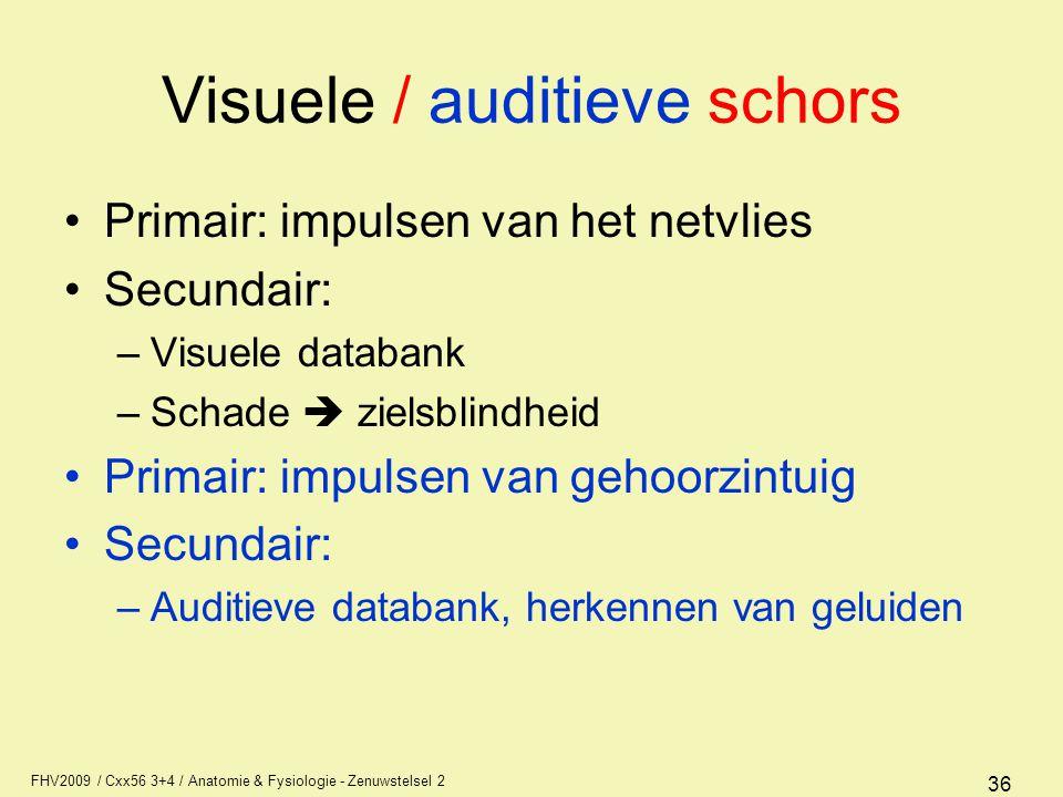 FHV2009 / Cxx56 3+4 / Anatomie & Fysiologie - Zenuwstelsel 2 36 Visuele / auditieve schors Primair: impulsen van het netvlies Secundair: –Visuele data