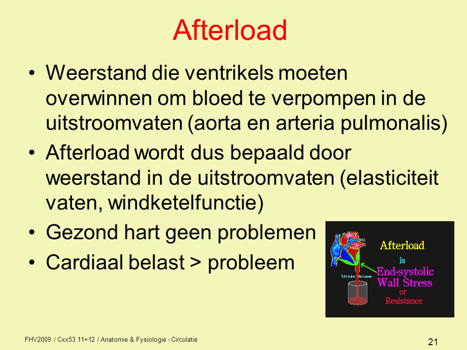 FHV2009 / Cxx53 11+12 / Anatomie & Fysiologie - Circulatie 21 Afterload Weerstand die ventrikels moeten overwinnen om bloed te verpompen in de uitstroomvaten (aorta en arteria pulmonalis) Afterload wordt dus bepaald door weerstand in de uitstroomvaten (elasticiteit vaten, windketelfunctie) Gezond hart geen problemen Cardiaal belast > probleem