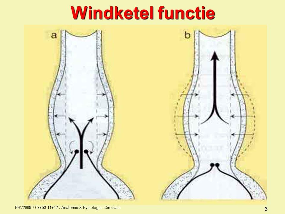 FHV2009 / Cxx53 11+12 / Anatomie & Fysiologie - Circulatie 7 Windketel effect 200 mm Hg 120 mm Hg 80 mm Hg 20 mm Hg Drukverschillen zonder wk-effectMet wk-effect