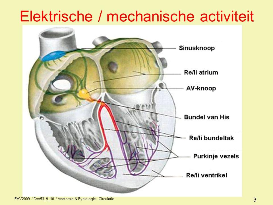 FHV2009 / Cxx53_9_10 / Anatomie & Fysiologie - Circulatie 23 Preload Einddiastolisch volume = hoeveelheid bloed aanwezig op einde van diastole in rechter- of linker ventrikel Het slagvolume neemt toe naarmate de ventrikel een hoger einddiastolisch volume heeft (rekking myofibrillen) wet van Frank-Starling