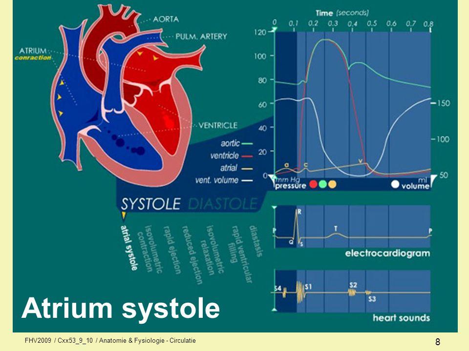 FHV2009 / Cxx53_9_10 / Anatomie & Fysiologie - Circulatie 7 Registratie van de elektrische activiteit van het hart.