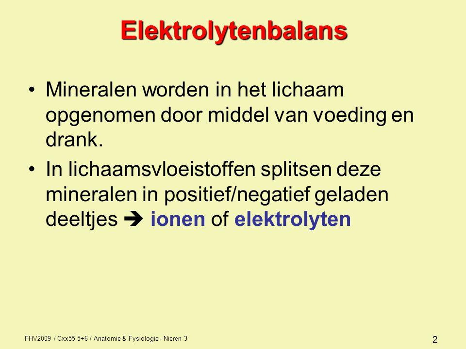 FHV2009 / Cxx55 5+6 / Anatomie & Fysiologie - Nieren 3 3Elektrolytenbalans Positief geladen ionen noemt men kationen –Natrium (Na + ) extracellulair –Kalium (K + ) Intracellulair –Calcium (Ca 2+ ) Alle compartimenten