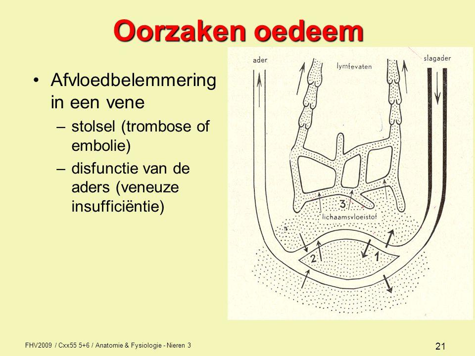 FHV2009 / Cxx55 5+6 / Anatomie & Fysiologie - Nieren 3 21 Oorzaken oedeem Afvloedbelemmering in een vene –stolsel (trombose of embolie) –disfunctie va