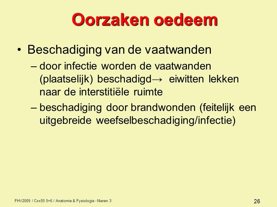 FHV2009 / Cxx55 5+6 / Anatomie & Fysiologie - Nieren 3 26 Oorzaken oedeem Beschadiging van de vaatwanden –door infectie worden de vaatwanden (plaatsel