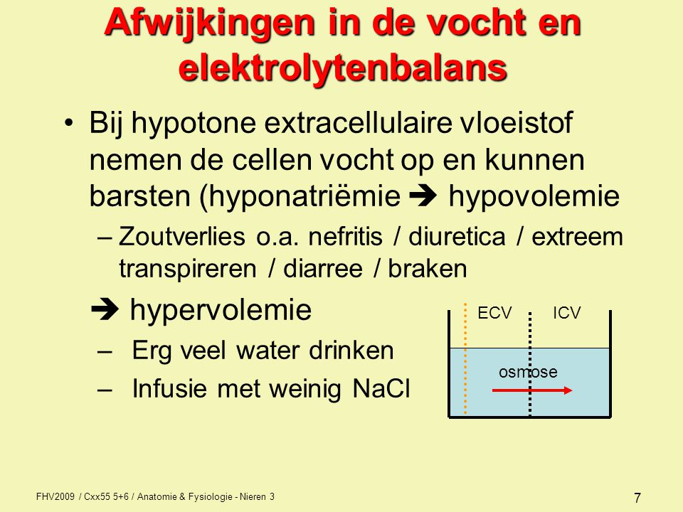 FHV2009 / Cxx55 5+6 / Anatomie & Fysiologie - Nieren 3 7 Afwijkingen in de vocht en elektrolytenbalans Bij hypotone extracellulaire vloeistof nemen de