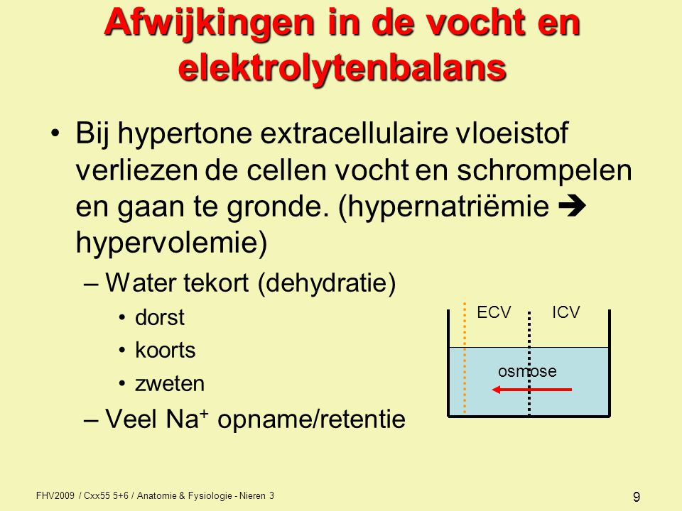 FHV2009 / Cxx55 5+6 / Anatomie & Fysiologie - Nieren 3 9 Afwijkingen in de vocht en elektrolytenbalans Bij hypertone extracellulaire vloeistof verliez