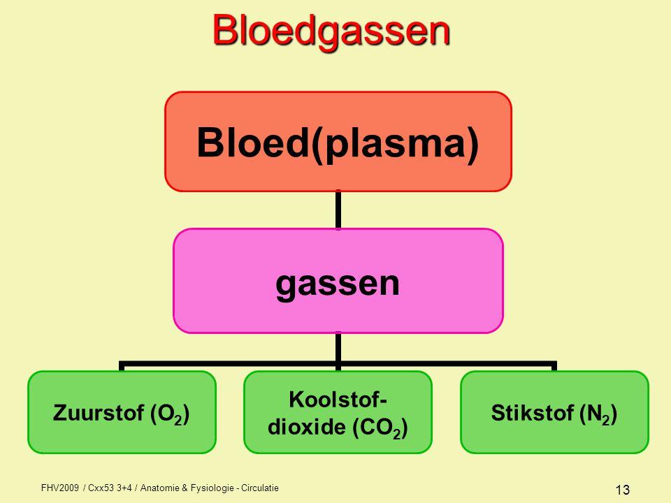 FHV2009 / Cxx53 3+4 / Anatomie & Fysiologie - Circulatie 13Bloedgassen Bloed(plasma) gassen Zuurstof (O2) Koolstof- dioxide (CO2) Stikstof (N2)