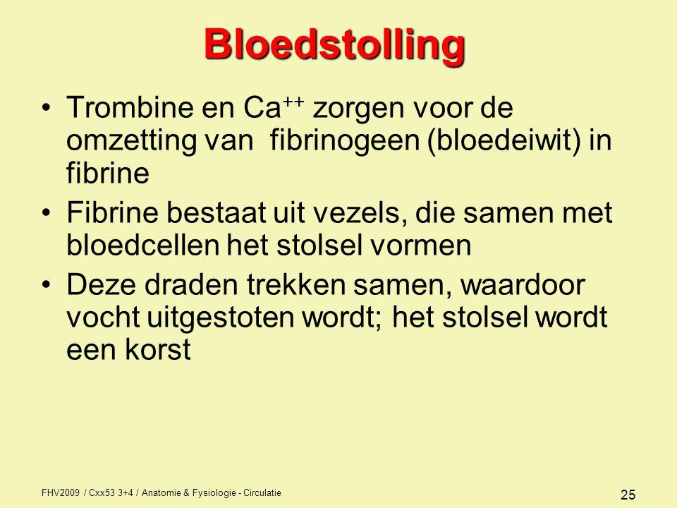 FHV2009 / Cxx53 3+4 / Anatomie & Fysiologie - Circulatie 25Bloedstolling Trombine en Ca ++ zorgen voor de omzetting van fibrinogeen (bloedeiwit) in fibrine Fibrine bestaat uit vezels, die samen met bloedcellen het stolsel vormen Deze draden trekken samen, waardoor vocht uitgestoten wordt; het stolsel wordt een korst