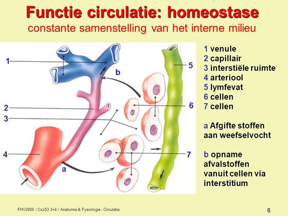 FHV2009 / Cxx53 3+4 / Anatomie & Fysiologie - Circulatie 6 Functie circulatie: homeostase Functie circulatie: homeostase constante samenstelling van het interne milieu 1 venule 2 capillair 3 interstiële ruimte 4 arteriool 5 lymfevat 6 cellen 7 cellen a Afgifte stoffen aan weefselvocht b opname afvalstoffen vanuit cellen via interstitium