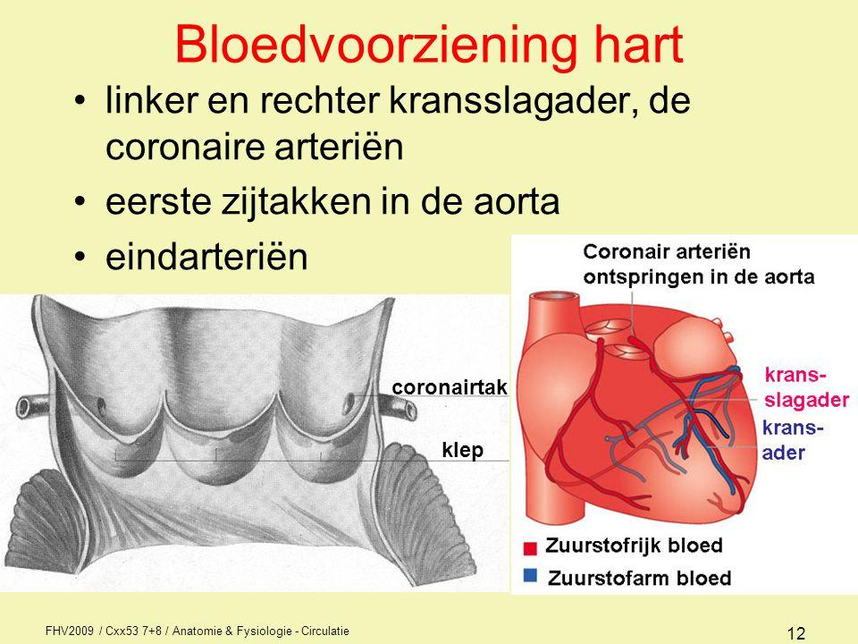 FHV2009 / Cxx53 7+8 / Anatomie & Fysiologie - Circulatie 11 Bouw van het hart; kleppen