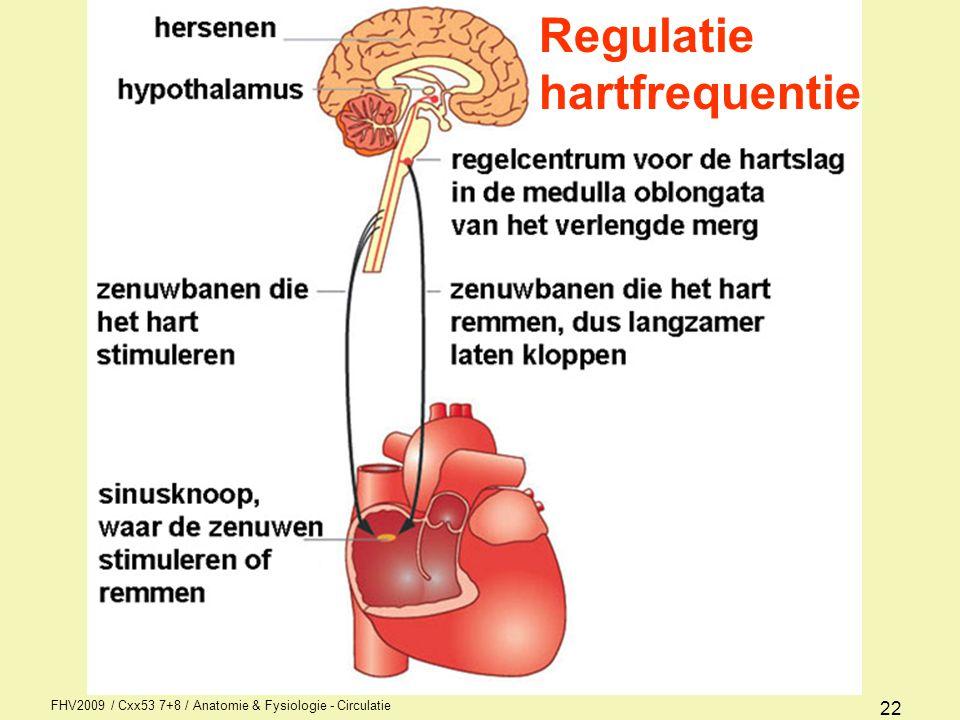 FHV2009 / Cxx53 7+8 / Anatomie & Fysiologie - Circulatie 21 Mens wordt geregeerd door FFF Fright (bang worden) Fight (vechten) Flight (vluchten) Dus: nervus vagus = parasympathisch => vertraagd nn accelerantes = sympathisch => versnelling Beïnvloeding sinusritme hartritme