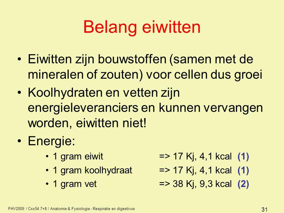 FHV2009 / Cxx54 7+8 / Anatomie & Fysiologie - Respiratie en digestivus 31 Belang eiwitten Eiwitten zijn bouwstoffen (samen met de mineralen of zouten)
