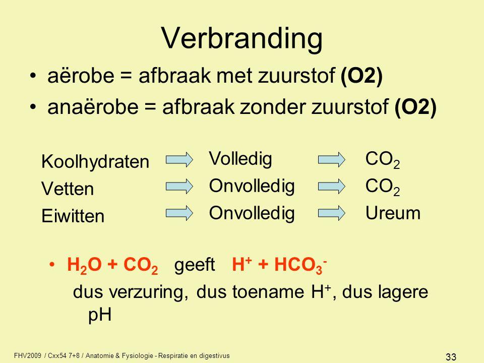 FHV2009 / Cxx54 7+8 / Anatomie & Fysiologie - Respiratie en digestivus 33 Verbranding Koolhydraten Vetten Eiwitten H 2 O + CO 2 geeft H + + HCO 3 - du