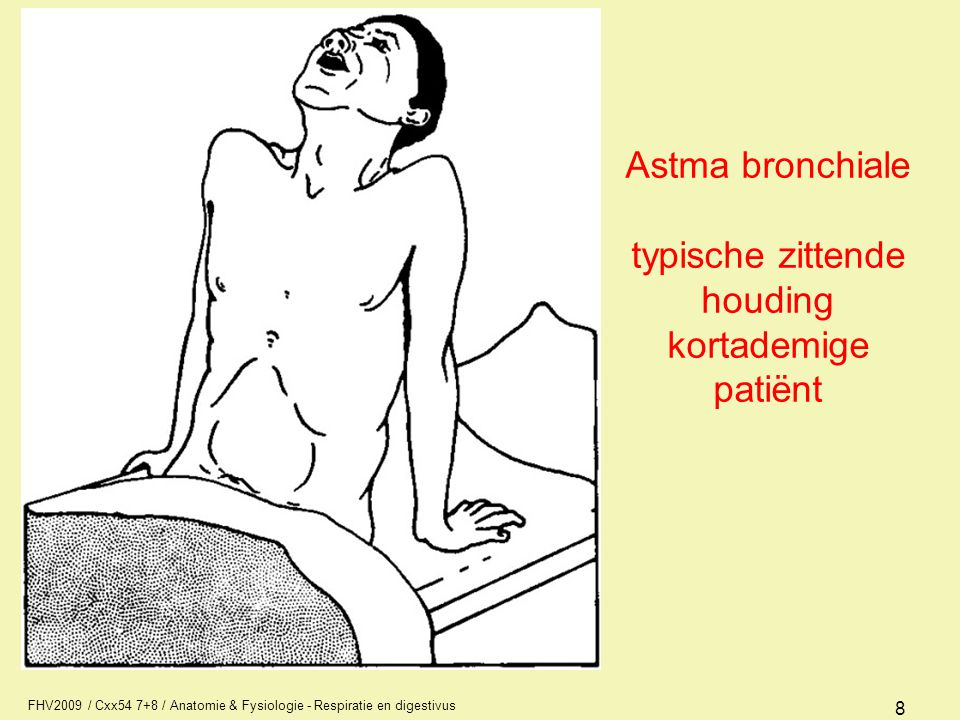 FHV2009 / Cxx54 7+8 / Anatomie & Fysiologie - Respiratie en digestivus 9 Dyspnoe oorzaken Grote hoogte –lage pO 2 Aandoening luchtwegen –grote ventilatie –kleine diffusie –pleurabladen –thorax –ademhalingscentrum