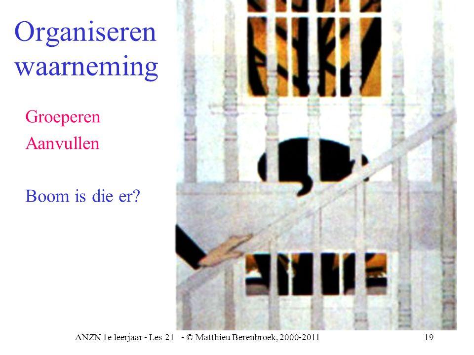 ANZN 1e leerjaar - Les 21 - © Matthieu Berenbroek, 2000-201120 Organiseren waarneming Perceptuele constancy Gelijk houden Grootte Vorm Kleur –Ondanks de verschillen van onze retina input