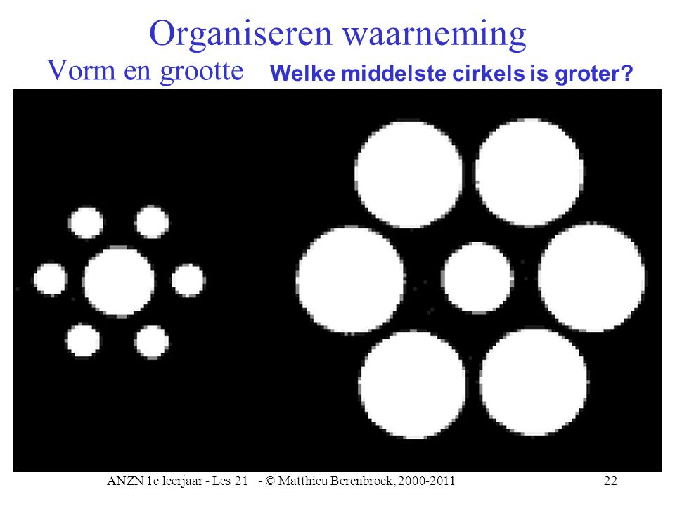 ANZN 1e leerjaar - Les 21 - © Matthieu Berenbroek, 2000-201123 Grootte Organiseren waarneming
