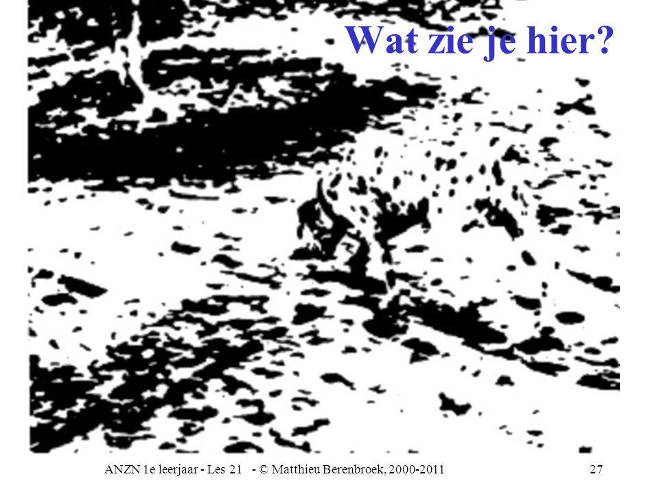 ANZN 1e leerjaar - Les 21 - © Matthieu Berenbroek, 2000-201127 Wat zie je hier?