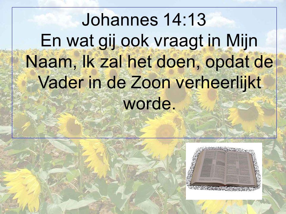 Johannes 14:13 En wat gij ook vraagt in Mijn Naam, Ik zal het doen, opdat de Vader in de Zoon verheerlijkt worde.