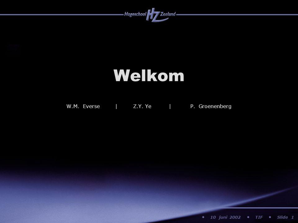 10 juni 2002 TIF Slide Welkom 1 W.M. Everse | Z.Y. Ye | P. Groenenberg