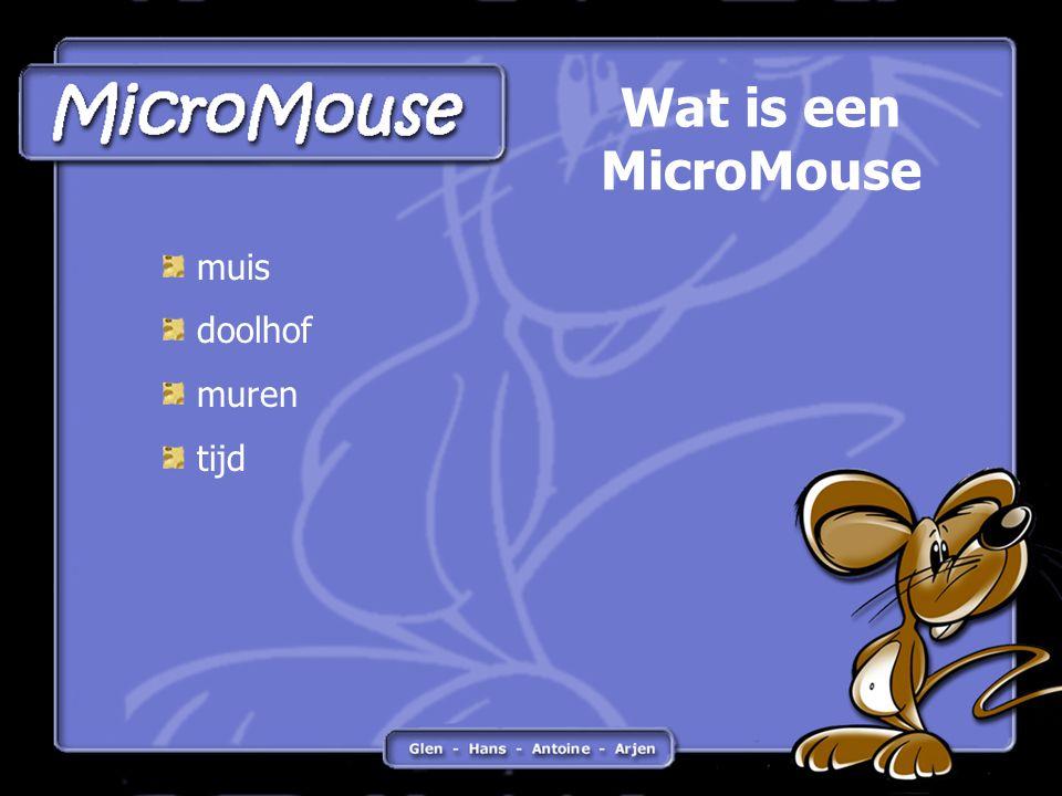 muis doolhof muren tijd Wat is een MicroMouse