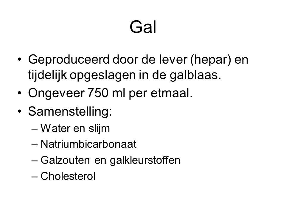 Gal Geproduceerd door de lever (hepar) en tijdelijk opgeslagen in de galblaas.