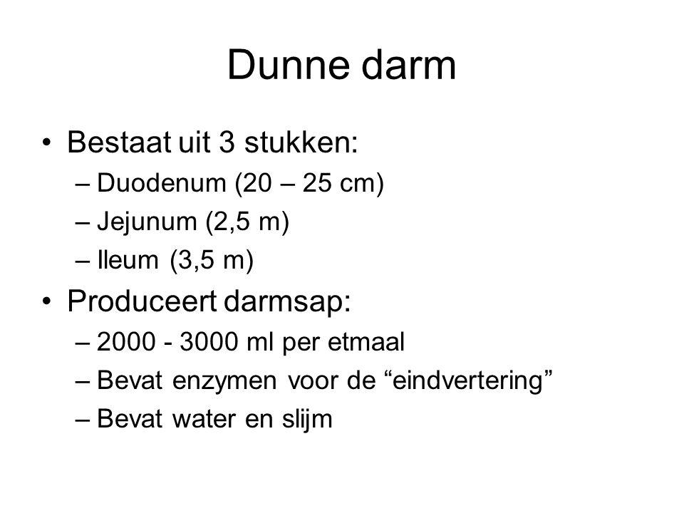Dunne darm Bestaat uit 3 stukken: –Duodenum (20 – 25 cm) –Jejunum (2,5 m) –Ileum (3,5 m) Produceert darmsap: –2000 - 3000 ml per etmaal –Bevat enzymen voor de eindvertering –Bevat water en slijm