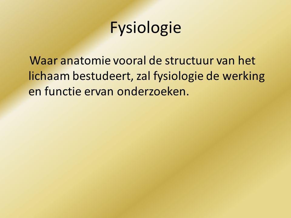 Fysiologie Waar anatomie vooral de structuur van het lichaam bestudeert, zal fysiologie de werking en functie ervan onderzoeken.