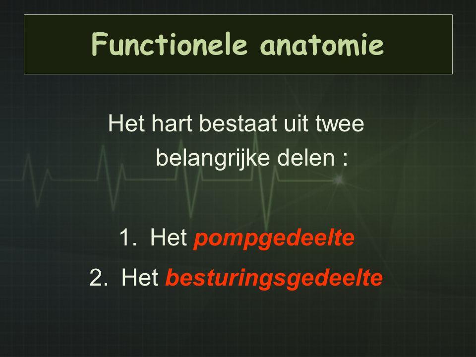 Functionele anatomie Het hart bestaat uit twee belangrijke delen : 1.Het pompgedeelte 2.Het besturingsgedeelte