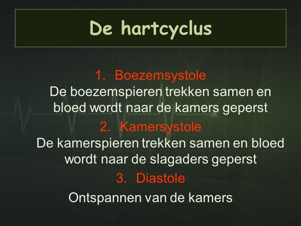 De hartcyclus