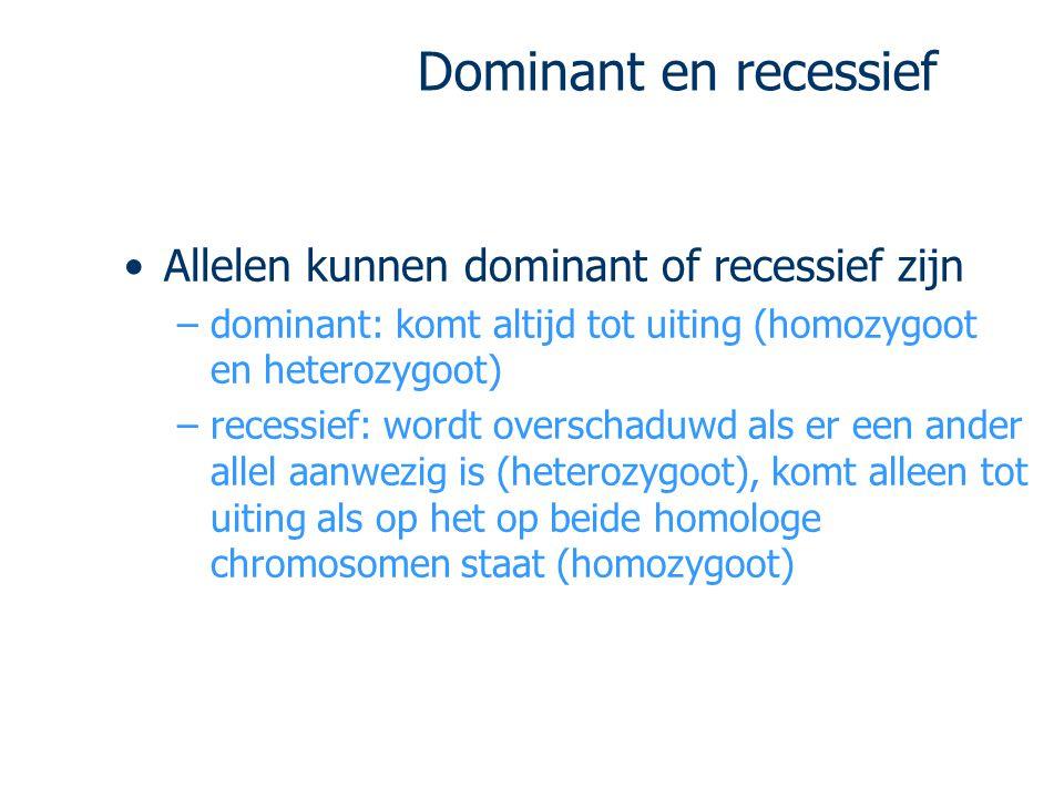 Dominant en recessief Allelen kunnen dominant of recessief zijn –dominant: komt altijd tot uiting (homozygoot en heterozygoot) –recessief: wordt overs